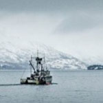 TritesAlaskaFishNews